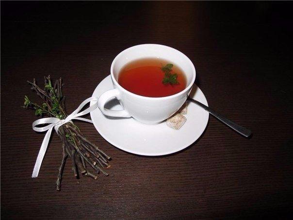 фото чай из веток альбом нирваны
