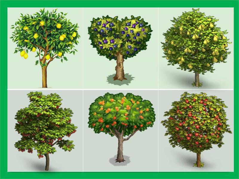 Деревья и кустарники игры