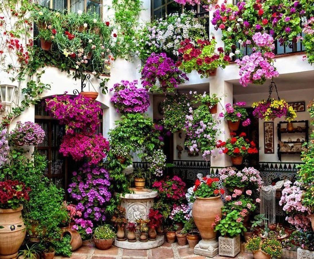 картинки цветочного домашних тем временем подсчитывают