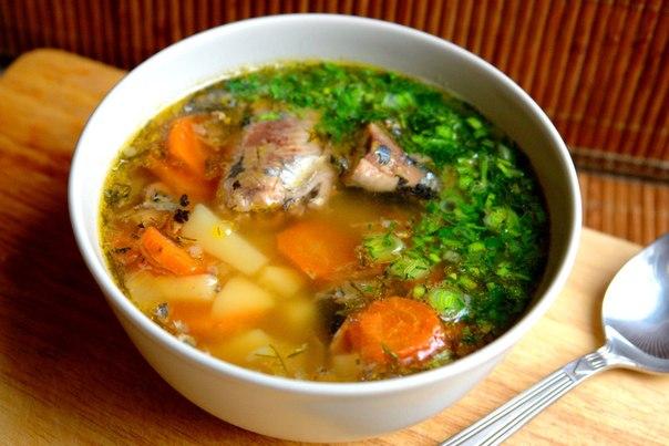 Вкусный суп из рыбной консервы