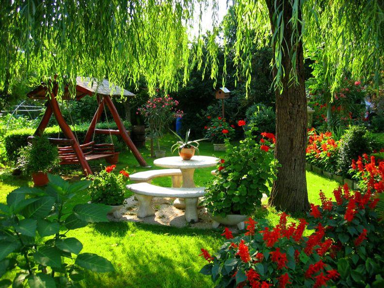 летние работы в саду